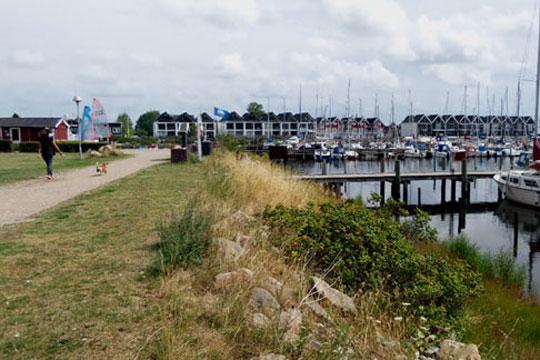 Ulovlig parkering på Nykøbing Havn