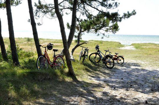 Badning frarådes ved Rørvig Strand